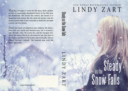 steady snow 1